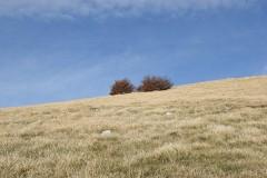 Monte-Mutria-33_2048